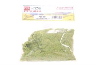 PSG-201 Spring grass, static grass 2mm - 30g bag